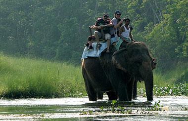 Nepal Jungle Safari Tours