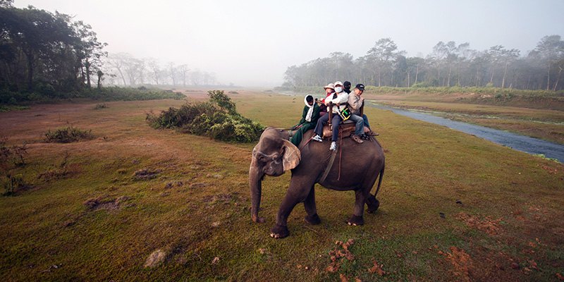 Chitwan National Park (6)