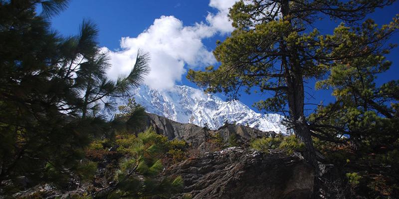 Langtang-Gosainkunda-Trekking-I