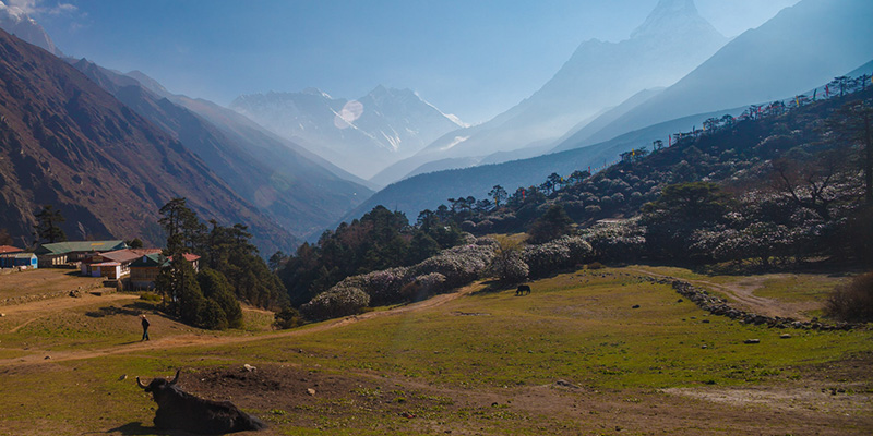 View From Himalayan Hotel Tengboche