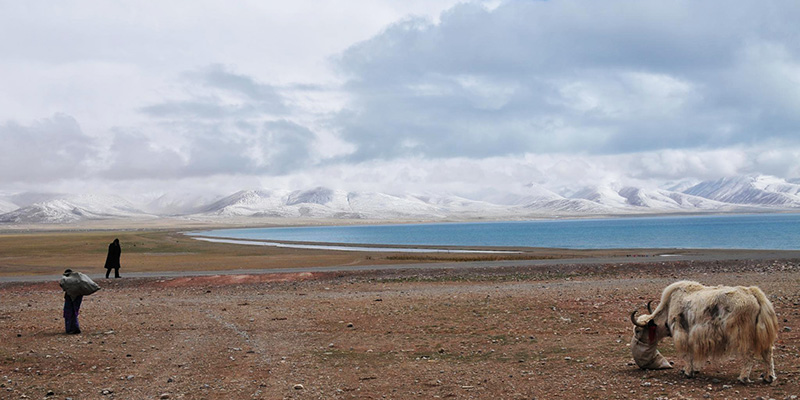 Lhasa-Nam-Tso-Lake-Tour-VII