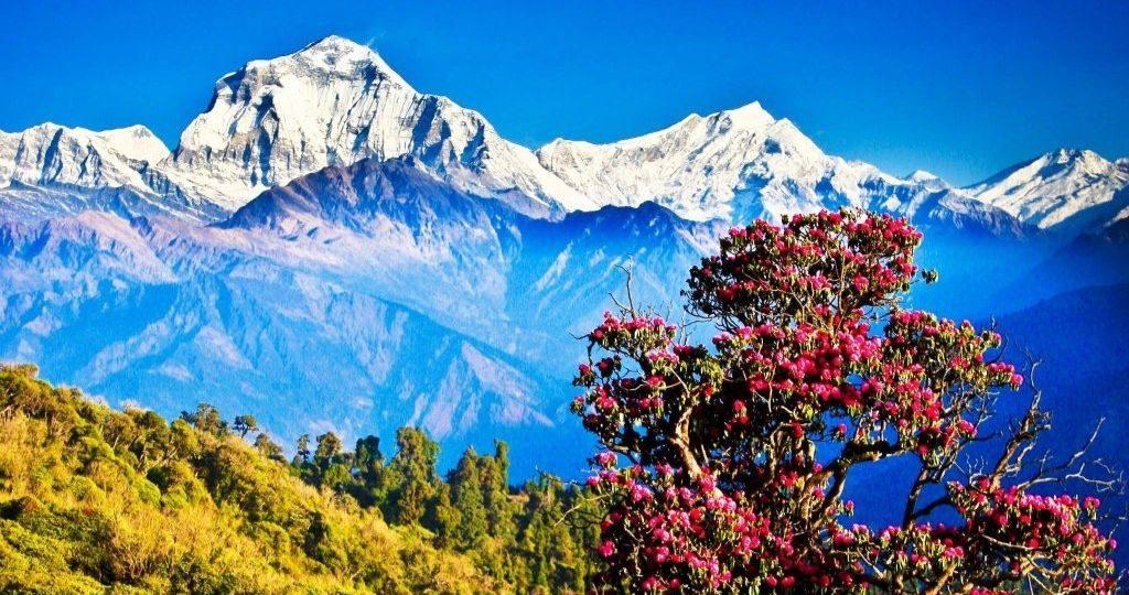 3 Days Treks in Nepal