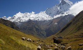 Annapurna Base Camp Trek Distance
