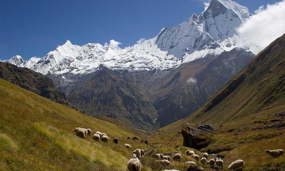 Annapurna Base Camp Trek in November